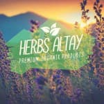 Herbs Altay
