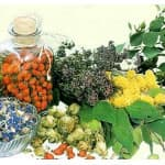 Medical products of Altai
